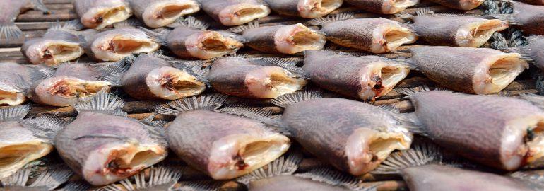 ปลา สลิด